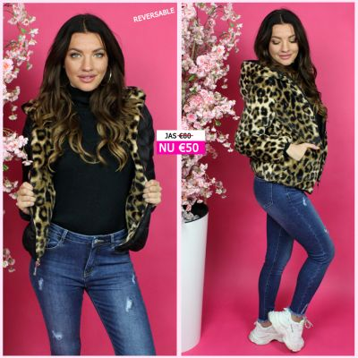 Reversible Short Jacket Leopard S20528